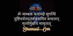 mahamrityunjaya-mantra-benefits-in-hindi-bhannaat.com